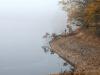 Husinecká přehrada podzim 2017