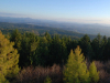 Kyjovské údolí a rozhledna Tanečnice