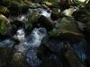 Libotyňský potok na jaře