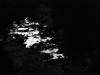 V noci na Husu